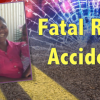 Pregnant woman dies in latest road accident
