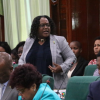 National Assembly hears of mining sector becoming more leveled playing field for all Guyanese