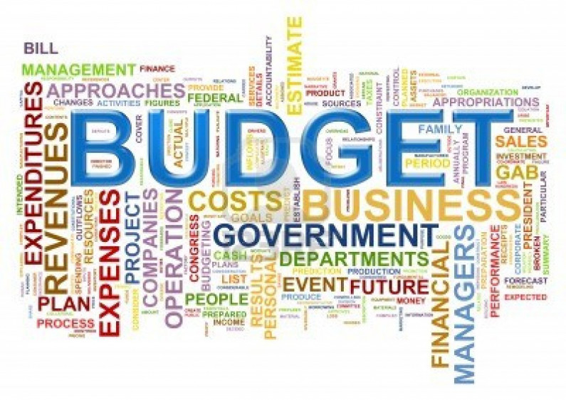 Budget strong on subsidies, weak on ideas  -Ram and McRae.