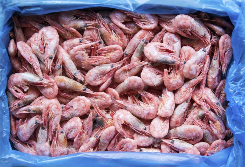 Guyanese man held for shrimp cocaine bust travelled to NYC to clear shipment