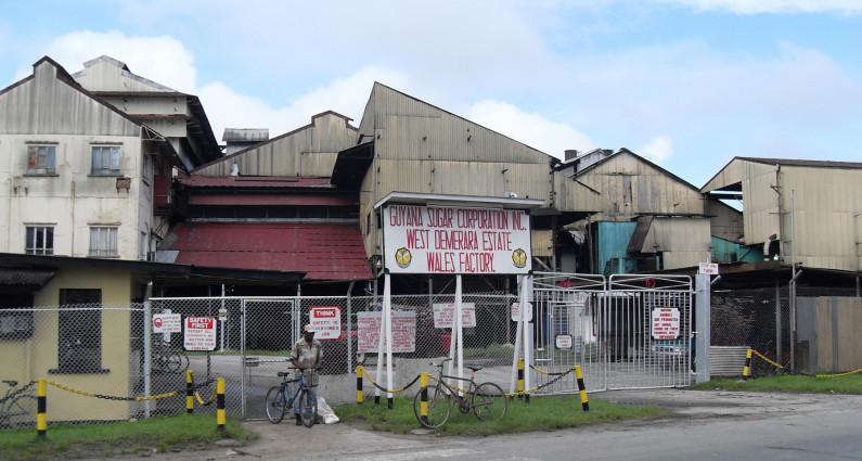 Government announces plan to close Wales Sugar Estate, workers to be absorbed by Uitvlugt