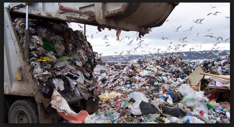 Solid Waste Department wants Council to license private waste removers