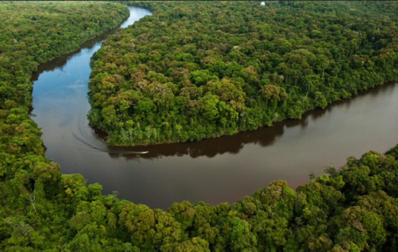 Guyana adds two million more hectares of land and waterways to conservation efforts