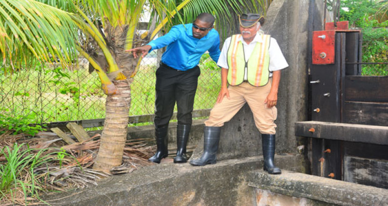 UPDATE: Gov't Engineer Walter Willis on life support