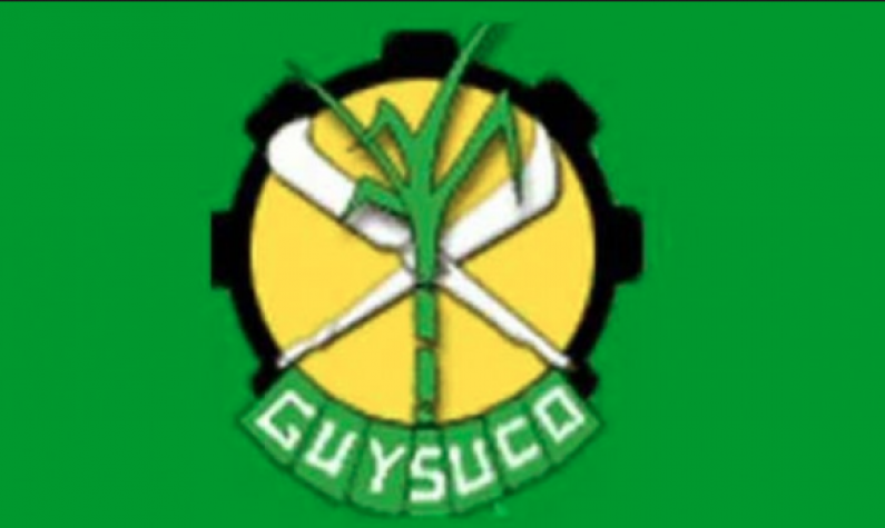 Agriculture Ministry no longer has responsibility for Guysuco  -Holder