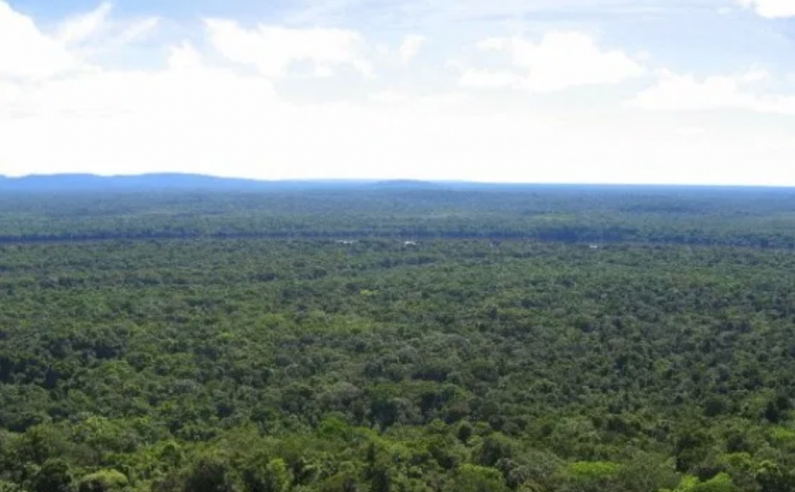 Norway releases $9.1 Billion to Guyana under Forest Agreement