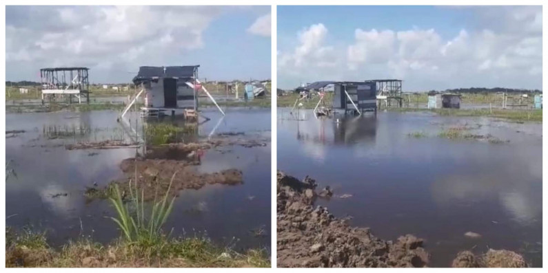 Guysuco continues to flood lands to force squatters off