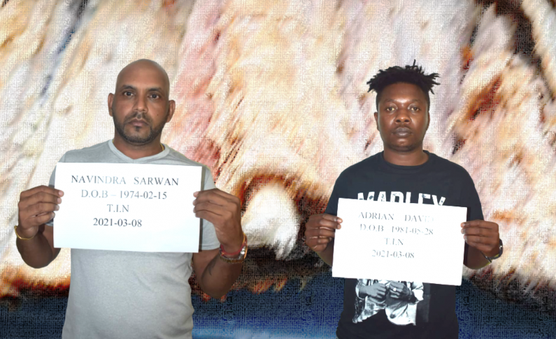 Cocaine saltfish duo remanded to jail