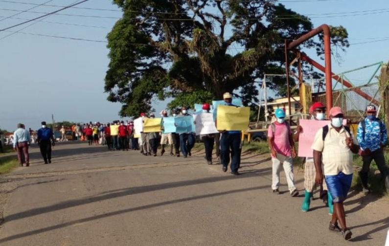 Albion and Blairmont sugar workers return to picket line in protest against GuysSuCo