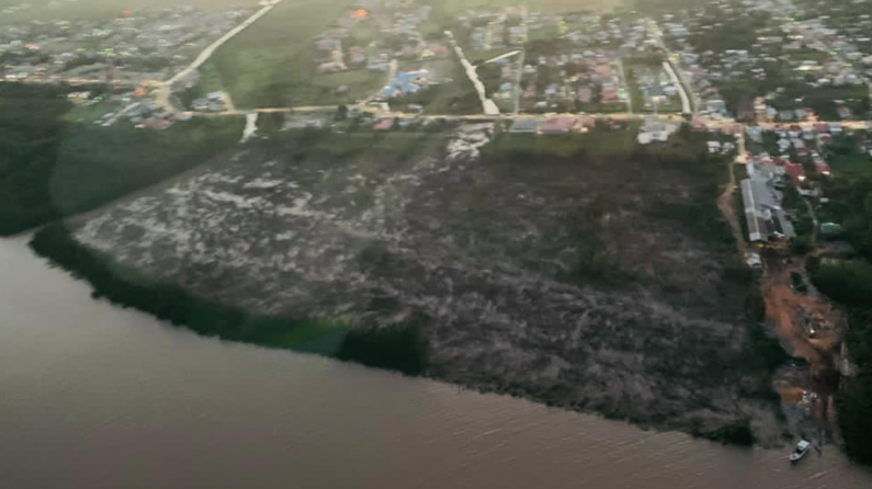 Harmon calls for cease order at site where mangroves are being destroyed