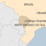 Brazil probes aquarium fish deaths