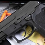 Only Firearms Licensing Board could review or revoke gun license