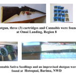 Businessmen arrested after found with unlicensed shotgun, live cartridges and marijuana
