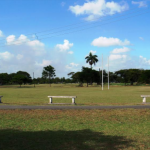 RUGBY:   NSC to upgrade National Park rugby field
