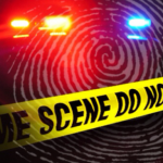 75-year-old woman dies after beaten and raped in Crabwood Creek home