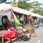 Harmony Village showcases Guyanese Culture, Food and Businesses