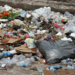 Consultation begins on proposal to ban single use plastic