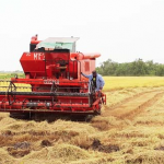 """Rice Producers Association slams Government over """"inaction"""" on hike in fuel prices"""