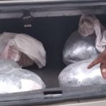 Two in custody over 33lb marijuana bust