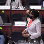 Budget has no clear policy to address impact of COVID-19  -says MP Sarabo-Halley