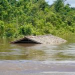 """Guyana to seek international help to deal with """"worst flooding disaster"""" -Pres. Ali"""