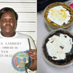 Woman busted with cocaine in frozen curry and pepperpot